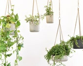 Concrete Hanging Planter, Cement Hanging Planter, Indoor/Outdoor Hanging Planter