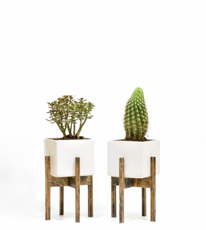 Mid-Century Modern Pflanze Stand mit Keramiktopf Blumenbank   Etsy