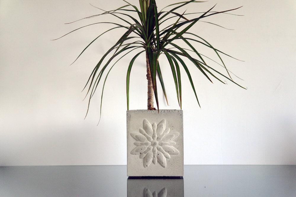 gro er beton bertopf kaktus pflanzer betontopf moderne etsy. Black Bedroom Furniture Sets. Home Design Ideas