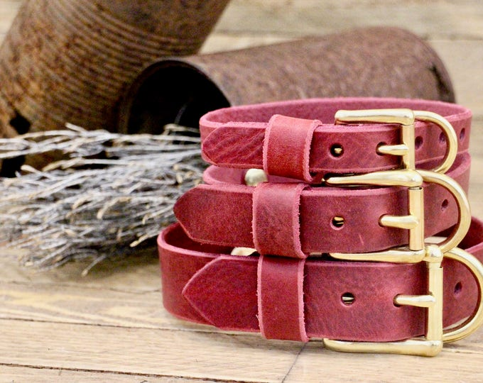 Leather Dog collars, FREE ID TAG, Collar, Burgundy,  collar, Custom leather collar, Solid brass , Handmade leather collar, Gold Hardware.