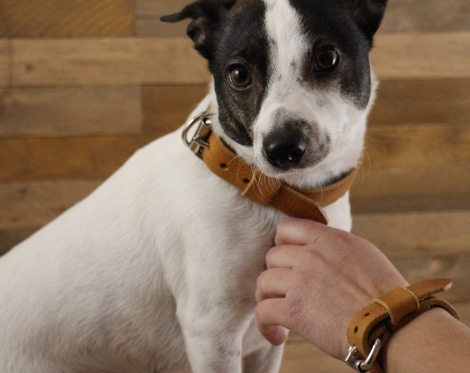 Leather bracelet, Match bracelet with dog collar, Womens leather bracelet, Jewelry, Handmade bracelet, Handmade leather bracelet, Gift.