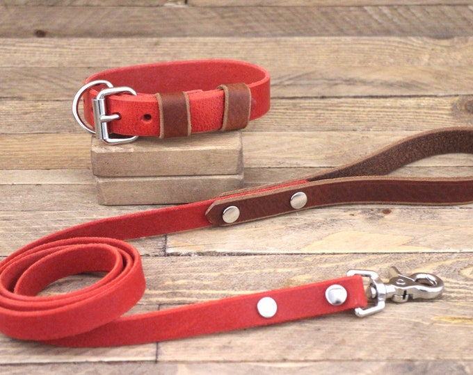 Collar and leash set, Leather collar, Leash, Silver hardware, Cayenne, Cowboy brown, FREE ID TAG, Handmade collar and leash, Sturdy collar.
