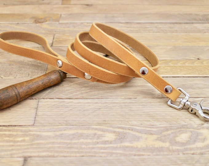 Dog leash, Whiskey dog leash, Custom leather leash, Pet gift, Distressed leather leash, Matching leather leash, Leash.