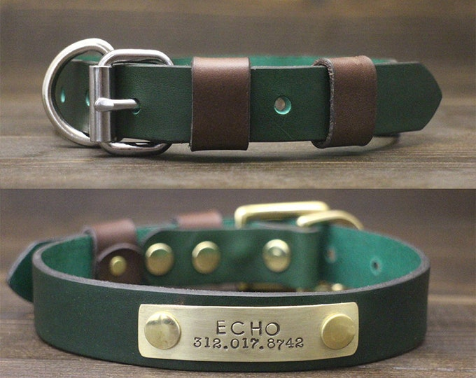 Dog collar, Leather dog collar, FREE personalisation, Brass-Silver hardware, Green dog collar, Two tone collar, Metal nameplate, Collar.