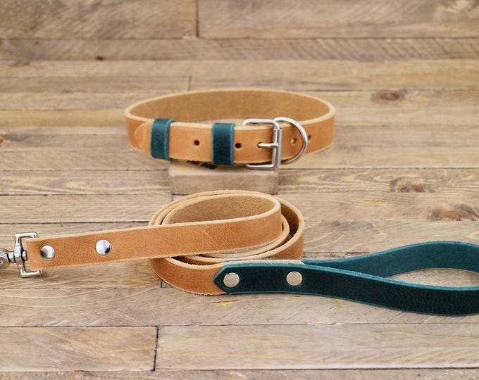 Leather leash, Leather collar, Collar and leash set, Dog collar, Silver hardware, Whiskey, Forest, FREE ID TAG, Handmade collar and leash.