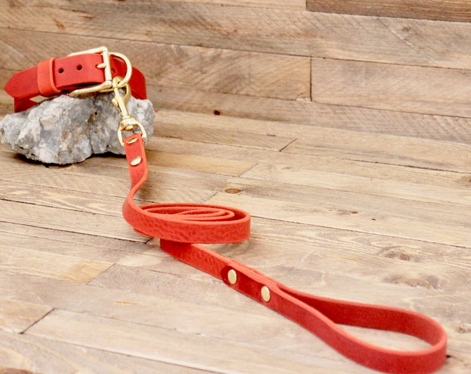 Dog collar, Dog leash, Set, Cayenne color, Brass hardware, FREE ID TAG, Collar and leash, Handmade leather collar, Leather leash, Collar.