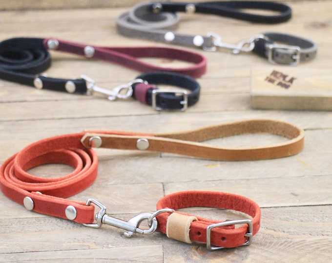 Leather dog collar, Small dog collar, Dog leash, Two tone set,, Light collar, Silver hardware, FREE personalisation, Red collar, Leash