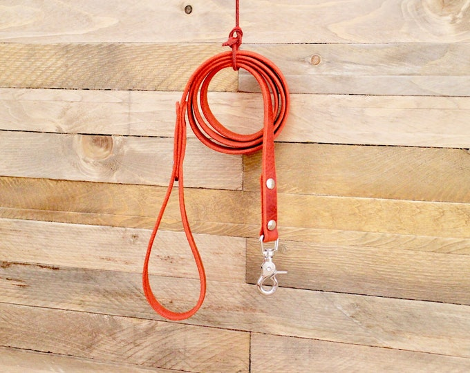 Dog leash, Handmade leather leash, Cayenne leash, Leather leash, Pet gift, Distressed leather leash, Matching leather leash, leash.