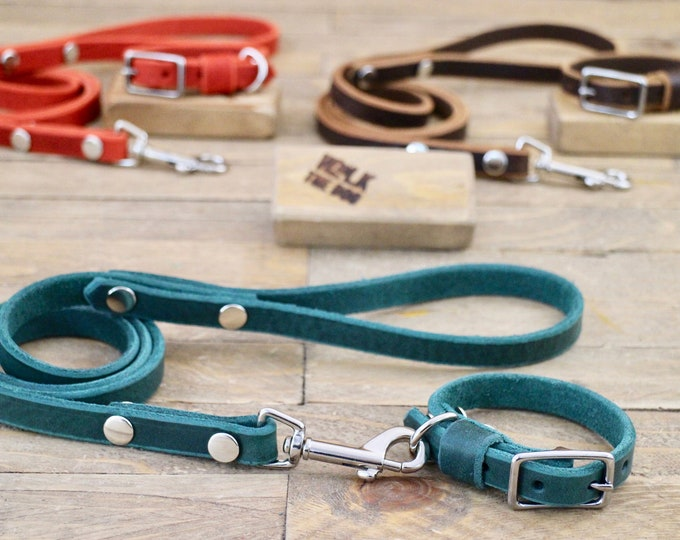 Small dog collar, Collar and leash set, FREE personalisation, Dog leash, Puppy collar, Silver hardware, 5/8'' Collar, Leather collar&leash
