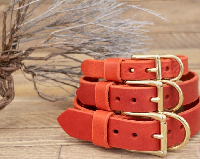 Dog collars, FREE ID TAG, Collar, Cayenne collar, Custom leather collar, Solid brass , Handmade leather collar, Gold Hardware, Red collar.