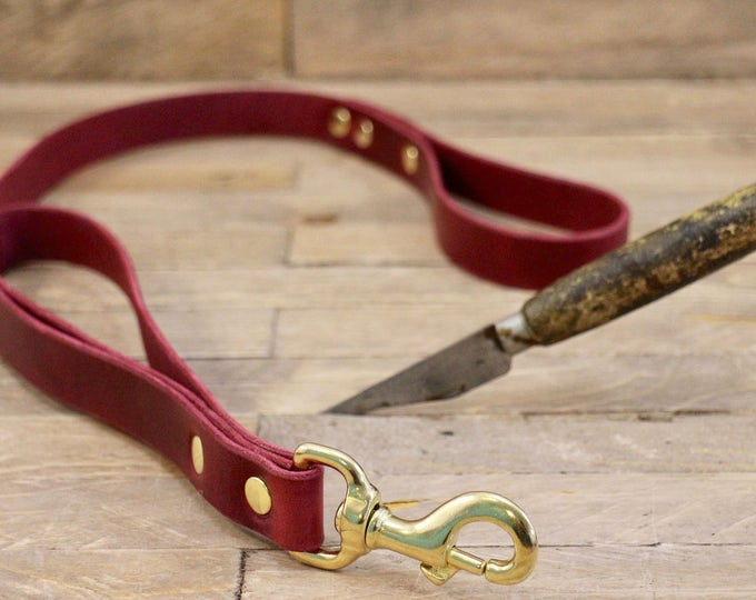 Traffic lead, Training leash, Dog leash, Lead, Two handle leash, Dog lead, Control lead, Lead, Traffic leash, Leather dog lead.