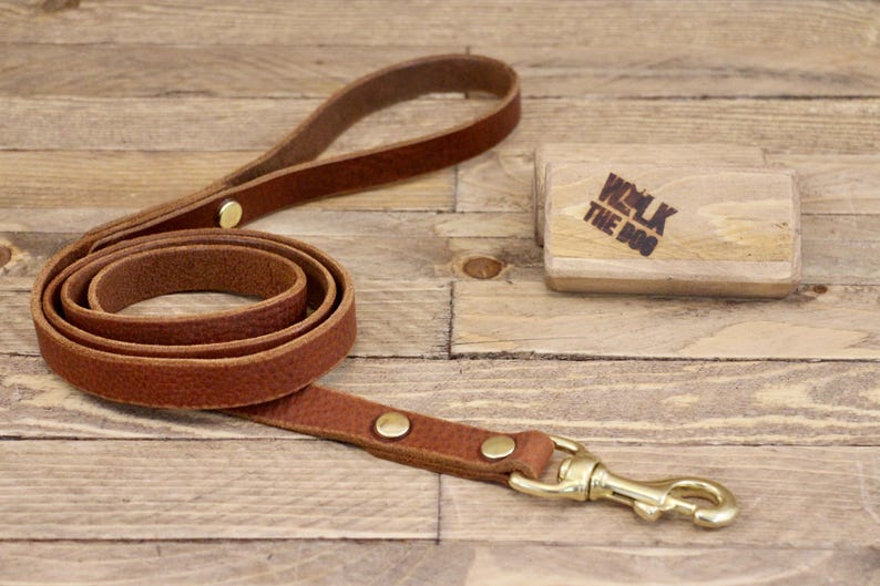 Leather lead Solid brass hardware Dog leash Leather dog image 0