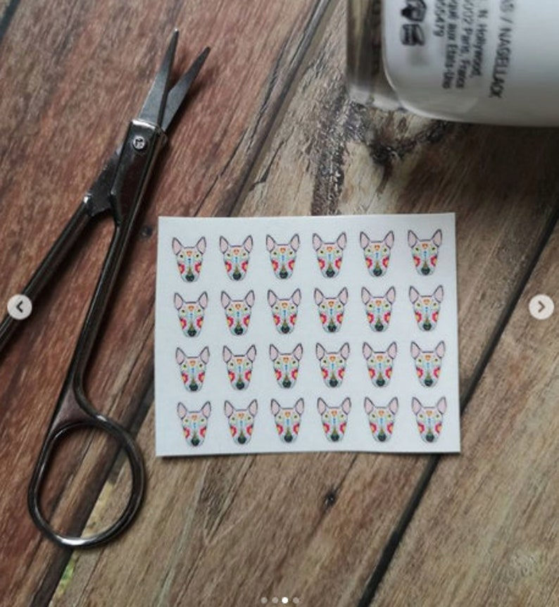 Nail Decals with custom option White Mexican Bully