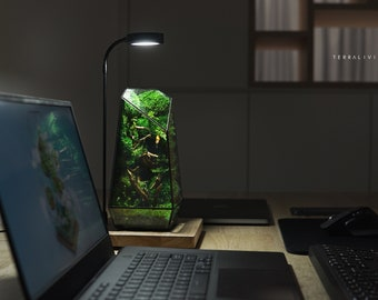 Ready-to-fly: The Vertex ZERO (S), Heart of Forest - Moss Wall, ZERO Preserved Moss Terrarium, Botanical sculpture by TerraLiving