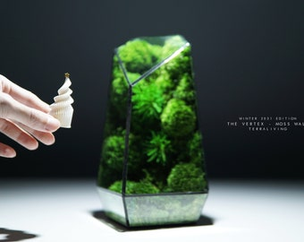 Christmas 2021 Pre-order: The Vertex ZERO (S), Geometric Preserved Moss Terrarium with Moss Wall, Winter 2021 Limited Edition by TerraLiving