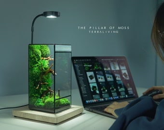Pre-order: The Pillar of Moss, A ZERO Preserved Moss Terrarium by TerraLiving, International Exclusive Release