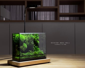 Ready-to-fly: Desktop Moss Wall ZERO - The Fluff (S), a preserved moss terrarium by TerraLiving, International Exclusive Release