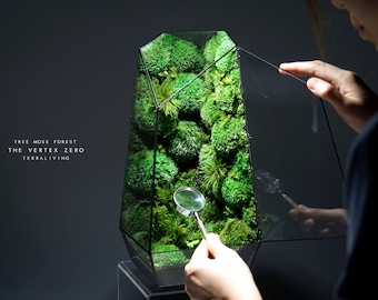Pre-order: The Vertex ZERO (L) - Tree Moss Forest, Limited Edition Preserved Moss Terrarium by TerraLiving