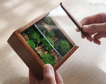 Pre-order: The Mosser -X, Moss Box ZERO, A preserved moss terrarium by TerraLiving