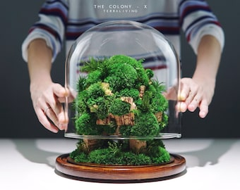 Pre-order: The Colony - X ; Tree Moss Forest, ZERO Moss Botanical Sculpture, Luxurious Preserved Moss Terrarium by TerraLiving.