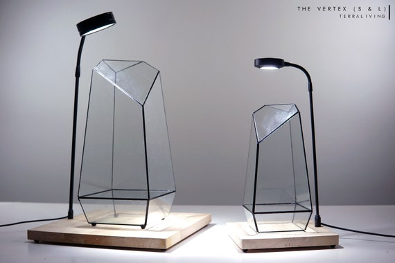 Ready-to-fly: The Vertex - Glass Vessels, Geometric Terrarium, Exclusive design by TerraLiving Gallery