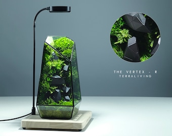 Ready-to-fly: The Vertex - R, Moss Wall, ZERO Preserved Moss Terrarium with 3D Printed Artwork, Geometric Terrarium by TerraLiving