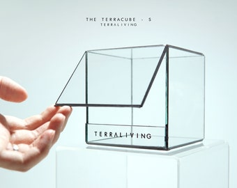 Ready-to-fly: The TerraCube - EMPTY Cubic Glass Vessel, Geometric Terrarium, Exclusive design by TerraLiving Gallery