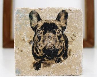 Frenchie French bulldog Vintage Travertine tile/Coaster Dog Love