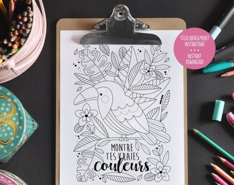 Inspiring Coloring - Show Your True Colors - Inspiring Phrase - Coloring to Frame