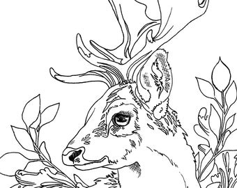 whitetail-deer-coloring-pages | | BestAppsForKids.com | 270x340