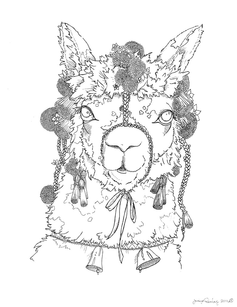 coloring pages for adults advanced coloring llama etsy