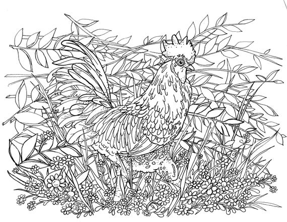 Top 10 Free Printable Rooster Coloring Pages Online | 440x570