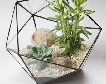 Medium Icosahedron / Stained Glass Terrarium / Handmade Glass Planter / Stained glass vase