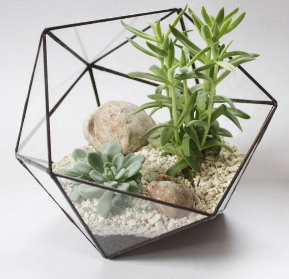 Medium Icosahedron Stained Glass Terrarium Handmade Glass Etsy