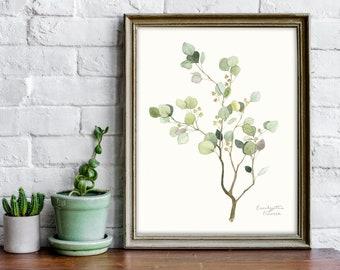 Eucalyptus Watercolor Painting - Nature Art Print - Flora Illustration - Dorm Decor - Nursery Wall Art