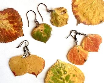 Real Aspen Leaf Earrings, Resin Leaf Earrings, Real Plant Jewelry, Aspen Leaf Jewelry, Real Leaf in Resin, Resin Plant Jewelry, Lightweight