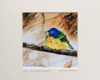 Painted Bunting Bird Print, colorful bird art, cute bird art, birds of Florida, bluebird art, bird art, realism bird art, woodland bird art