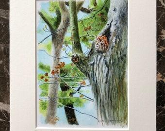 Owl art print, cute owl art, nursery wall art, woodland critters art, owl art, forest art, kids art print, screech owl print, owl home decor