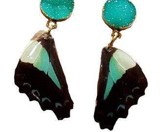 Butterfly Wing Jewelry - Memorizing - Real Butterfly Wing Earrings - Sterling Silver