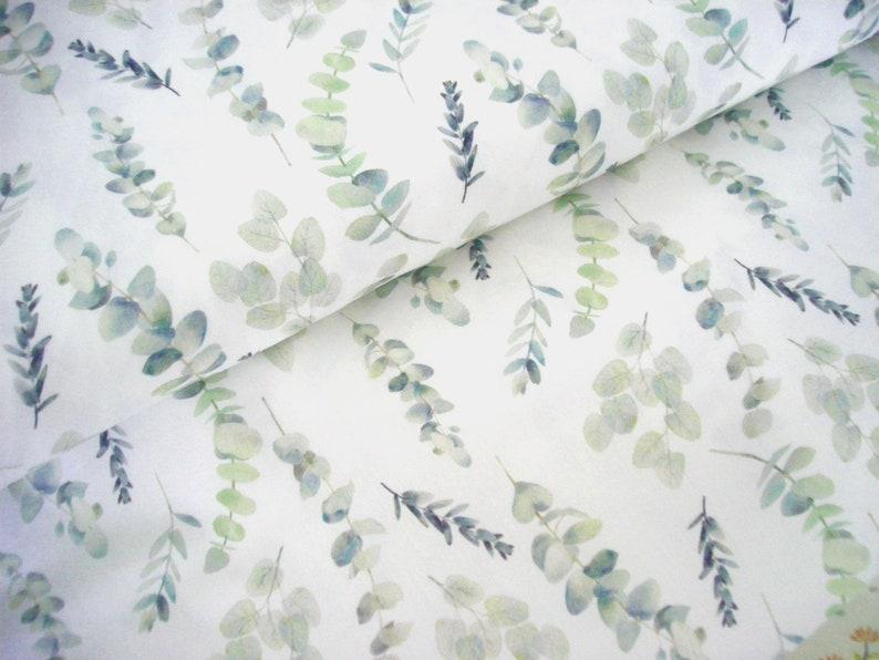 Cotton fabric woven Eucalyptus Plant  Eucalyptus  branches  image 0