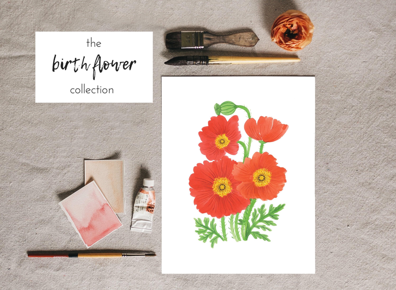 August Birth Flower Poppy Floral Illustration Poppy Flower Etsy