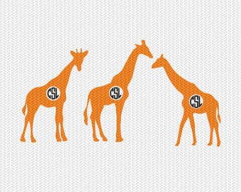 giraffe monogram frame svg dxf file instant download silhouette cameo cricut downloads clip art commercial use