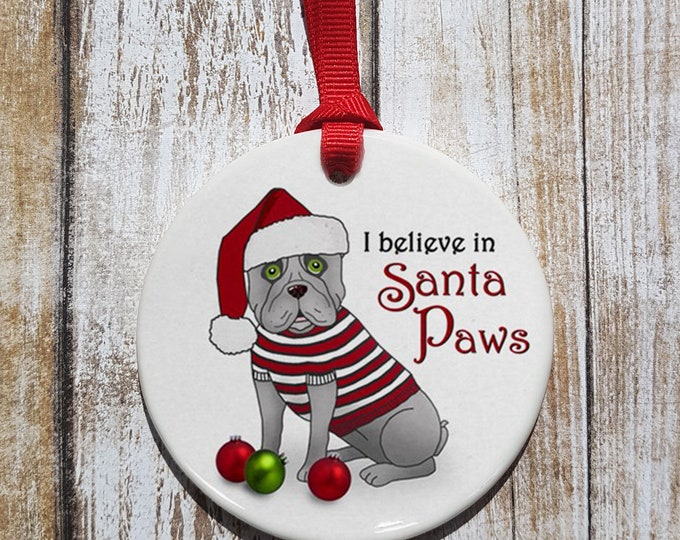 I Believe in Santa Paws Ornament