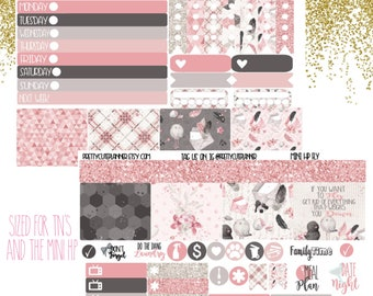 Mini Happy Planner Stickers - Personal Planner Sticker - Travelers Notebook Sticker - BuJo Sticker - Journaling Sticker - Springtime - Birds