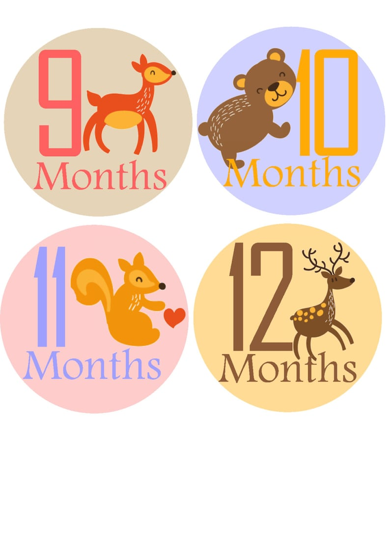 Monthly Baby Stickers Month Sticker Baby Month Stickers Baby Monthly Stickers Monthly Stickers Baby Stickers Photo Sticker Month by Month