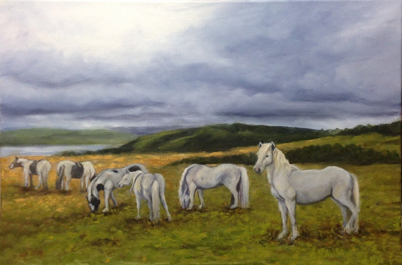 White horses on moors in dramatic Welsh landscape Framed Oil image 0