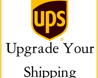 Expedited Shipping/Rush Shipping/Hurry/UPS