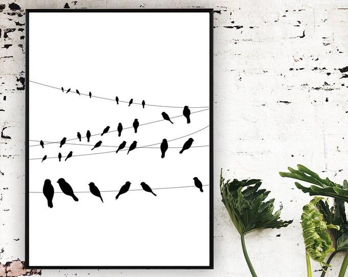 Poster con uccelli. Bianco e nero. Stile scandinavo. Stampa tipografica. Wall decor.