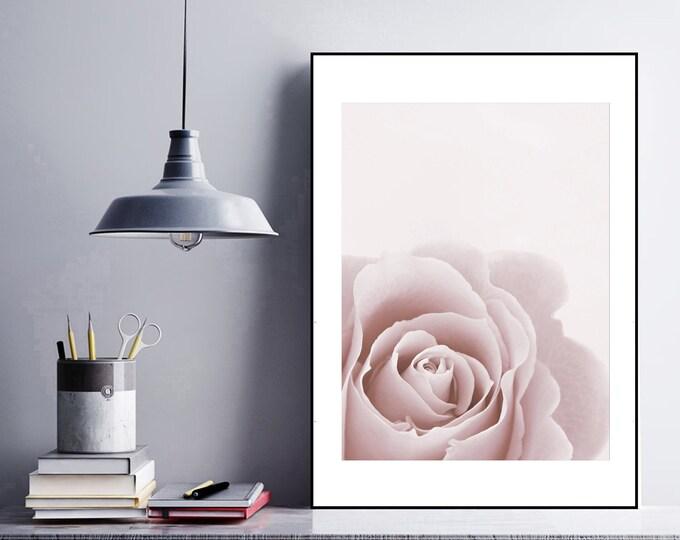 Stampa di un poster con fotografia di una rosa. Stampa tipografica. Stile scandinavo. Stampa decorativa murale.