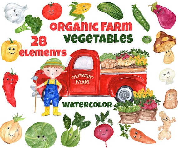 Watercolor Vegetables Clipart FARM CLIPART Kawaii